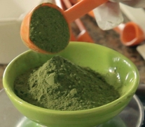 Moringa powder, the superfood ingredient in Kuli Kuli bars